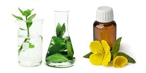 Waku Organics luonnonkosmetiikan verkkokupan tuotteissa on vain luonnon ainesosat